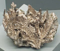 Silver (Mesoproterozoic, 1.05-1.06 Ga; Michigan Mine, Ontonagon County, Upper Peninsula of Michigan, USA) (17259628616).jpg