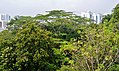 Singapore Southern Ridges 17.jpg