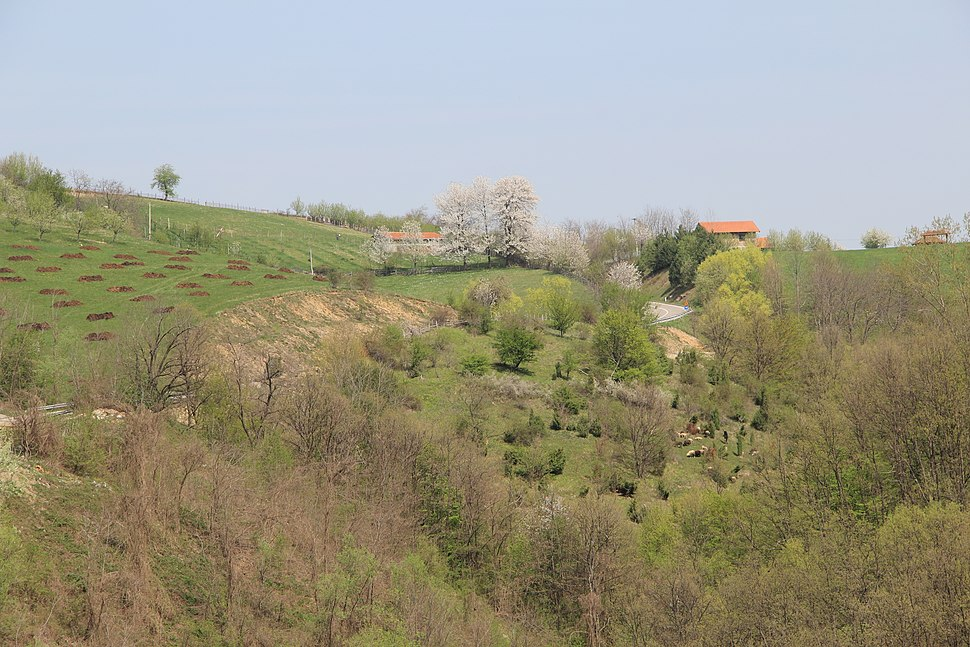 Sitarice - opština Valjevo - zapadna Srbija - panorama 4