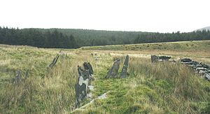 English: Slate fencing marking field boundarie...