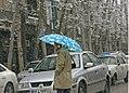 Snowy day of Tehran - 13 January 2007 (12 8510230258 L600).jpg