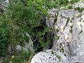 Soča - panoramio (10).jpg