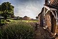 Somerset, United Kingdom (Unsplash nzAZxPyhZ2g).jpg