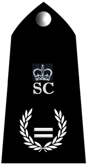 Metropolitan Special Constabulary - Assistant Chief Officer MSC