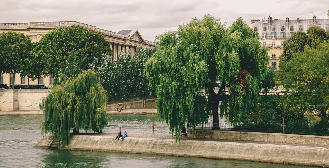 Square du Vert-Galant, Paris September 2013.jpg