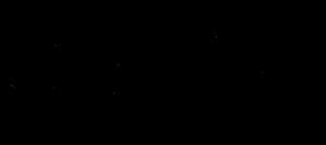 Stanley Fischer - Image: Stanley Fischer (סטנלי פישר) Signature 2010