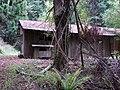 Starr-090521-8384-Fraxinus uhdei-habitat with old CCC cabin-Polipoli-Maui (24930141346).jpg