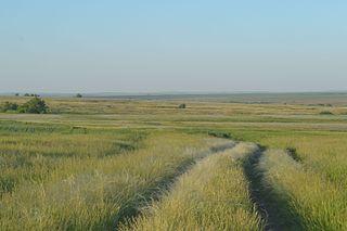 District in Orenburg Oblast, Russia