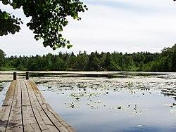 Stockbysøen.   Vy mod syd.   Foto:   juni, 2008.