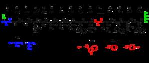 Gramicidin - Structures of gramicidins A, B and C