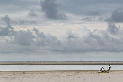 Superagui - A praia deserta.jpg