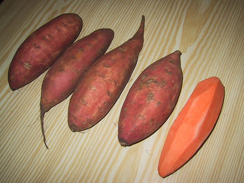 Sweet potato, unprepared