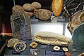 Tampere Mineral Museum - fossils.jpg