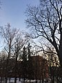 Tartu - -i---i- (31618874264).jpg