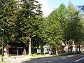 Tatranska Kotlina 0292.jpg
