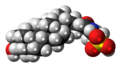 Taurolithocholic acid molecule spacefill.png