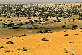nature reserve in the southeast of Niger