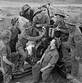 The British Army in the Normandy Campaign 1944 B7835.jpg