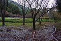 The Entrance Garden of Wuling Farm 武陵農場入口花園 - panoramio.jpg