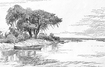 The Lanier Oak-Southern Life in Southern Literature 006.jpg