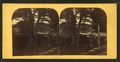 The Meadow Bridge, Peterboro, N.H., near view, from Robert N. Dennis collection of stereoscopic views.png
