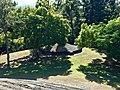 The Old Hummock Limestone Residue, Ipswich, Queensland 01.jpg