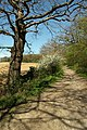 The Scrubs Byway - geograph.org.uk - 157013.jpg