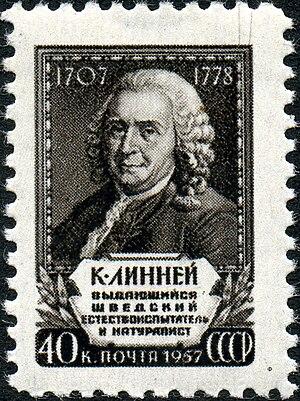 The Soviet Union 1958 CPA 2115 stamp (Carl Linnaeus).jpg