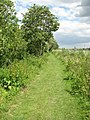 The Wherryman's Way - along the River Chet - geograph.org.uk - 1362480.jpg