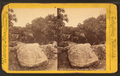 The spring near Devil's Den, Gettysburg, Pa, from Robert N. Dennis collection of stereoscopic views.png