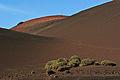 Timanfaya National Park IMGP1856.jpg