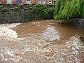 Tiverton , River Lowman Weir - geograph.org.uk - 1428670.jpg