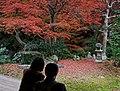 Tofuku-ji (4587236457).jpg