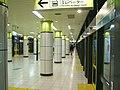 TokyoMetro-N14-Komagome-station-platform.jpg