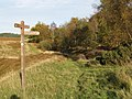 Track junction, near Fairydean Burn - geograph.org.uk - 269251.jpg