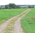 Track near Theddingworth, Leicestershire - geograph.org.uk - 547367.jpg