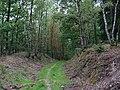 Trail from Dreiborner Hochfläche to Sauermühle 01.jpg