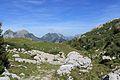Trail to Silberenalp - panoramio (38).jpg