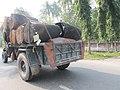 Transport in Puthia 03.jpg