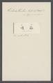 Trichoda trochus - - Print - Iconographia Zoologica - Special Collections University of Amsterdam - UBAINV0274 113 15 0019.tif