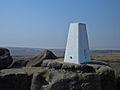 Trig Pillar, Blake Moor - geograph.org.uk - 401715.jpg