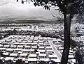 Trnodol, 1964.jpg