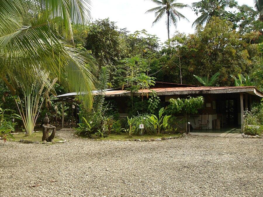Field Station La Gamba