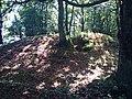 Tumulus de Kerméné en Guidel.jpg