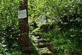 Tux - Naturdenkmal ND 9 39 - Umgebung der Schraubenfallhöhle - I.jpg