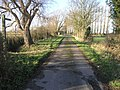 Two Paths From One - geograph.org.uk - 322240.jpg