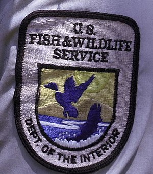 English: Patch showing the logo of the U.S. Fi...