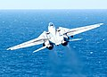 US Navy 060302-N-0685C-002 An F-14D Tomcat from the.jpg