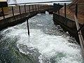 Usina Porto Primavera - Escada para peixes - panoramio.jpg
