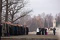 Vainagu nolikšana Rīgas Brāļu kapos (6334372376).jpg